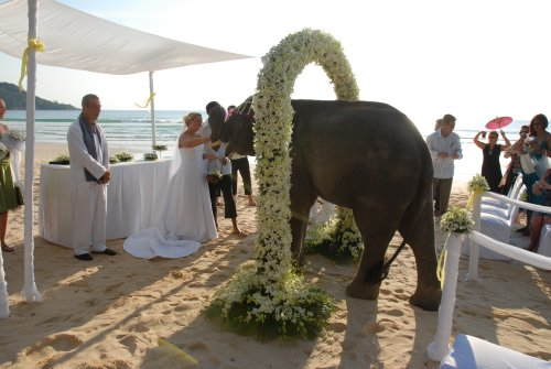 thailand wedding 3