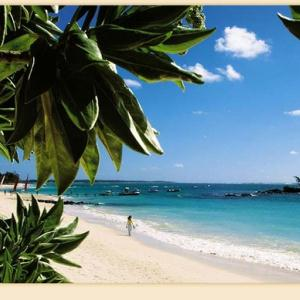 Destination Weddings at Belle Mare Plage, Mauritius
